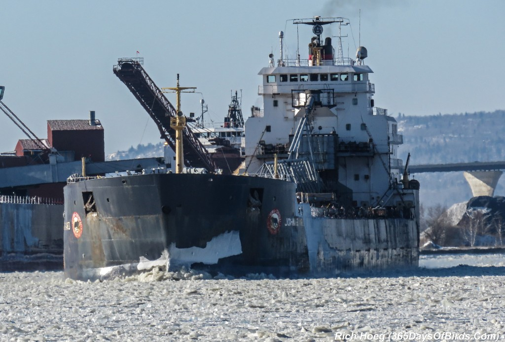 356-Birds-365-Algoma-Central-Freighter