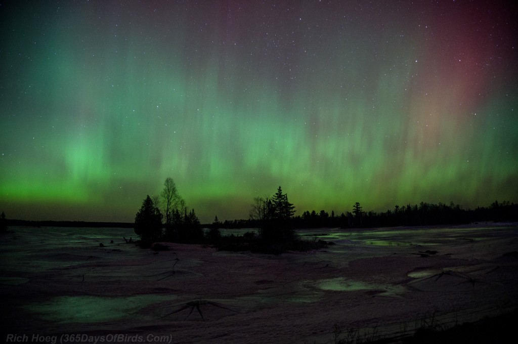 St-Patricks-Day-Aurora-02
