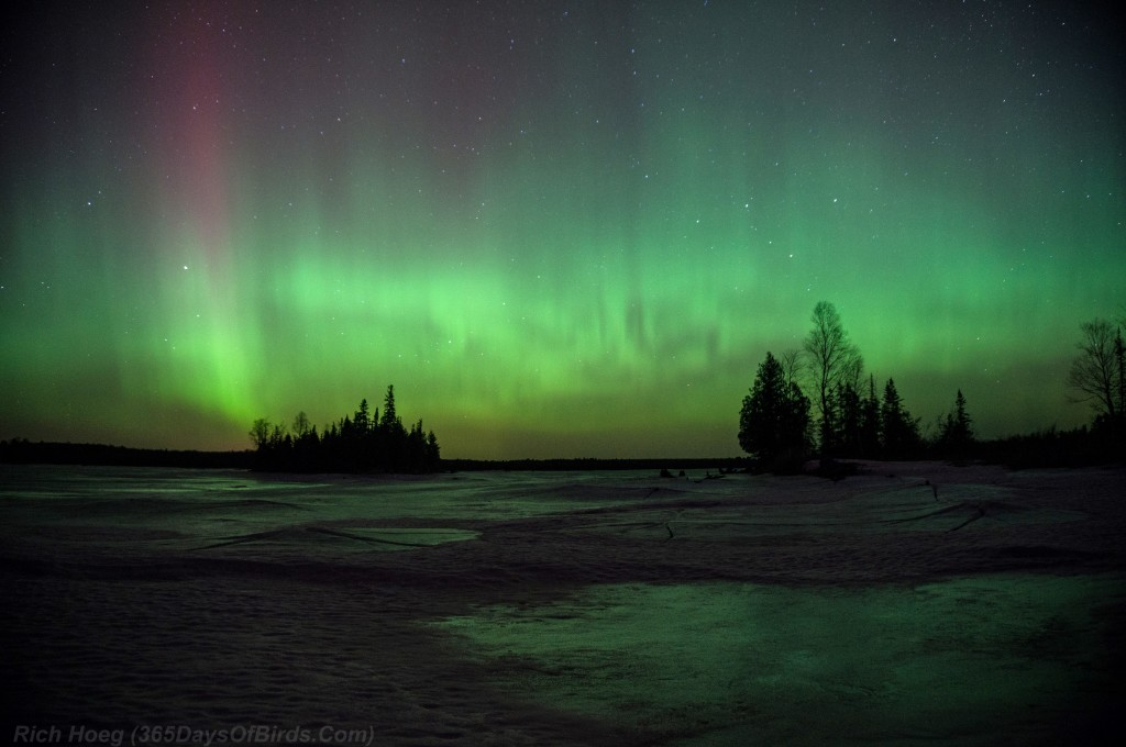 St-Patricks-Day-Aurora-03