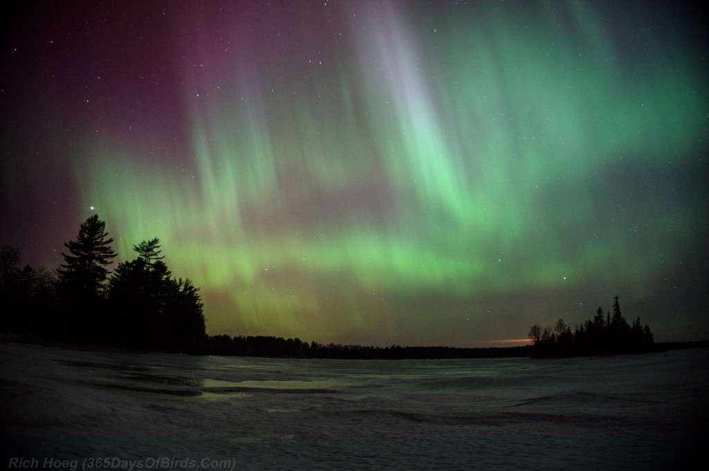 St-Patricks-Day-Aurora-04