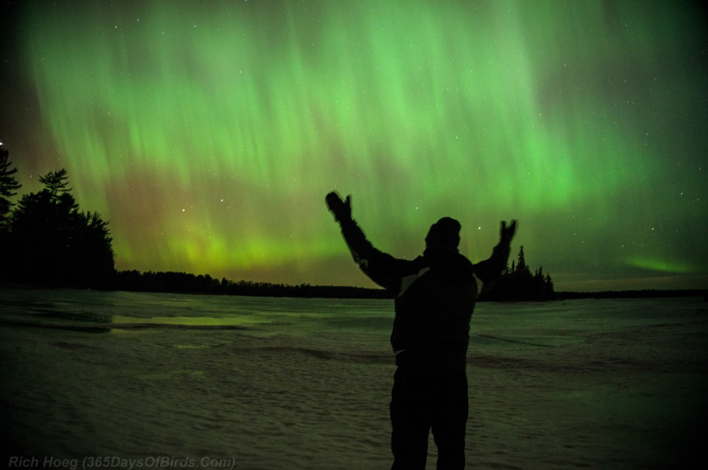 St-Patricks-Day-Aurora-05-Selfie