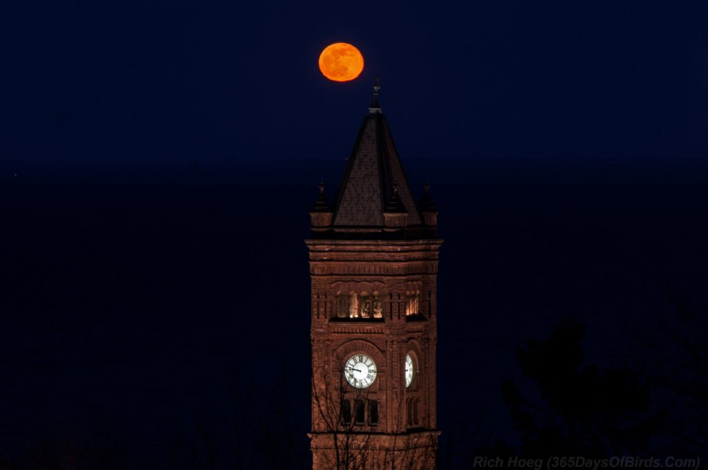 Duluth-Central-High-School-Moonrise