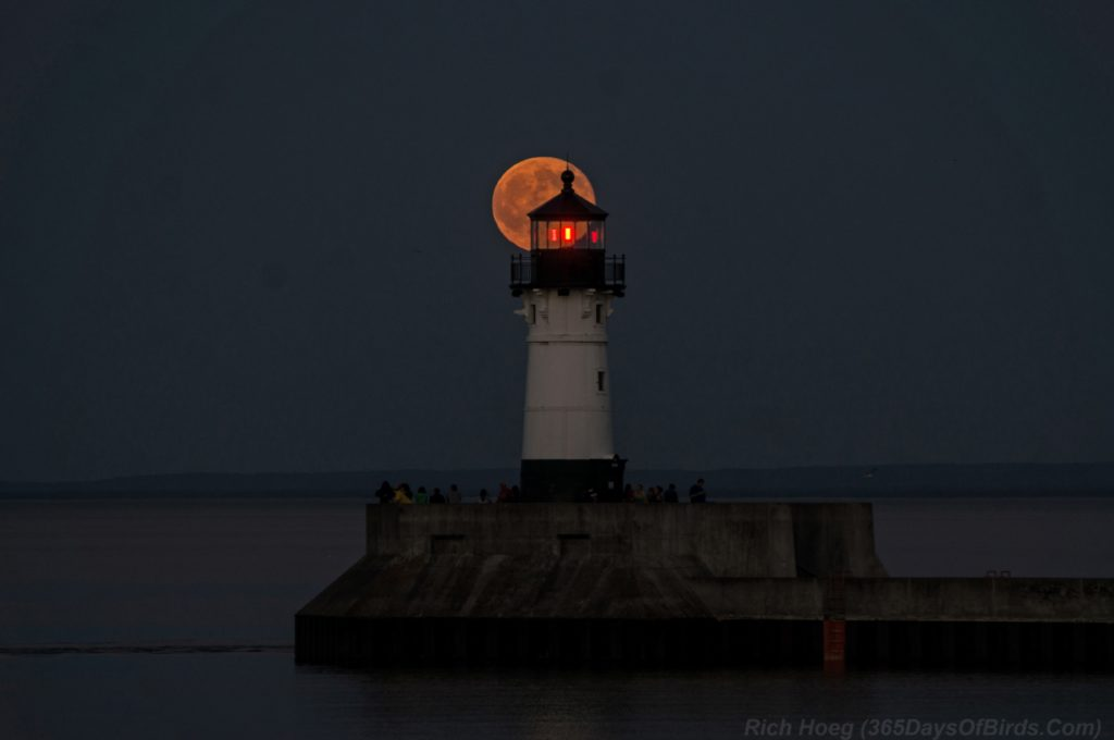Strawberry-Moon-Canal-Park-1