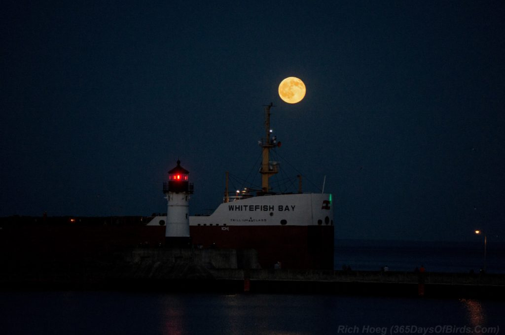 Strawberry-Moon-Canal-Park-3