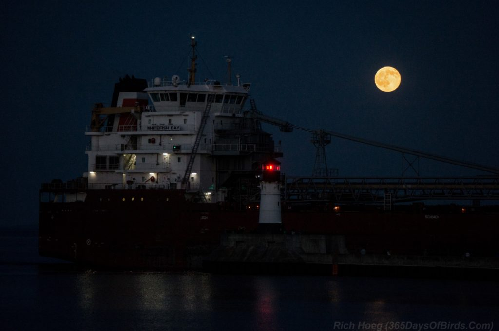 Strawberry-Moon-Canal-Park-4