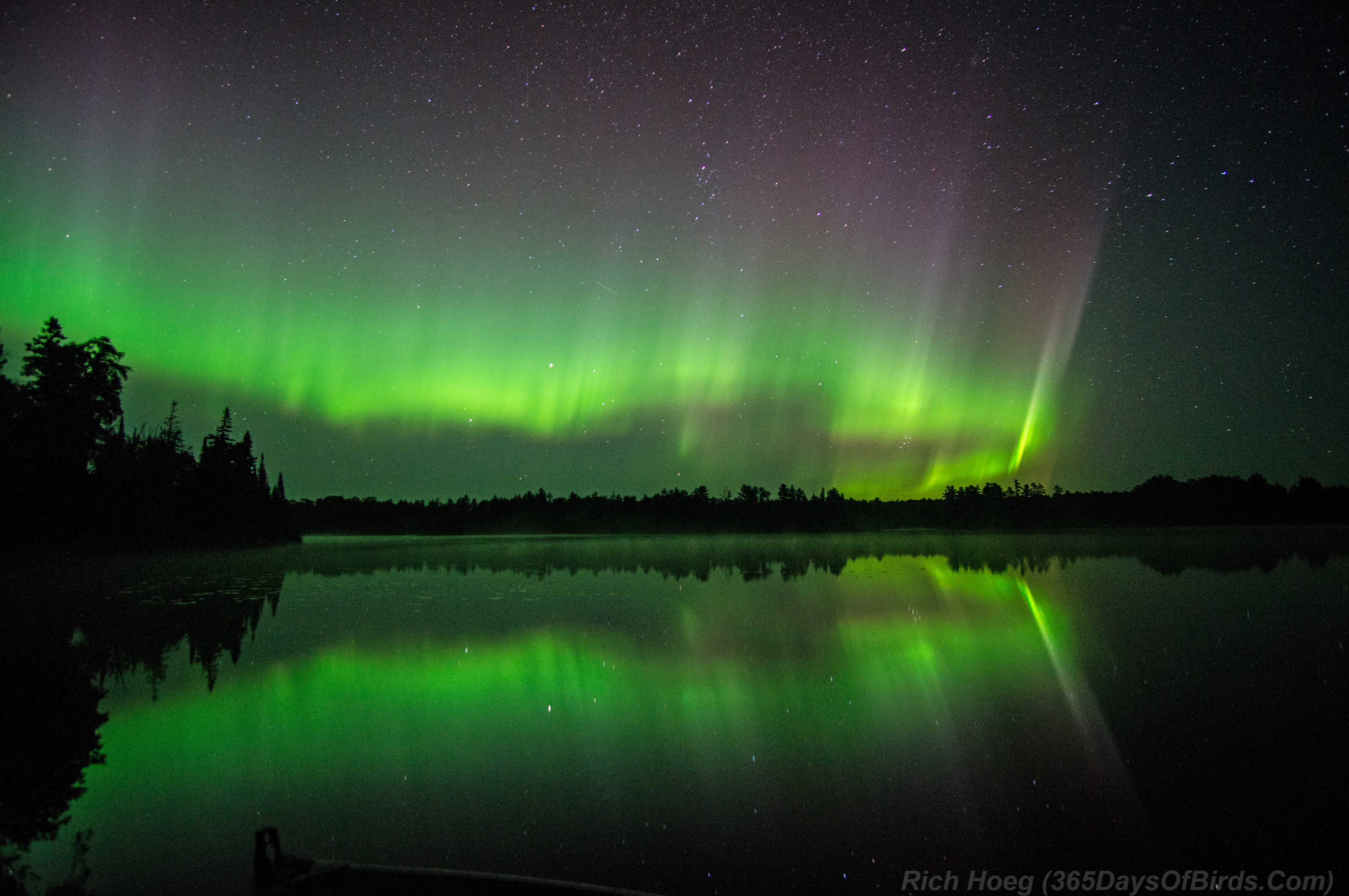 A Northern Night to Remember! Aurora Borealis Dance!   365 ...