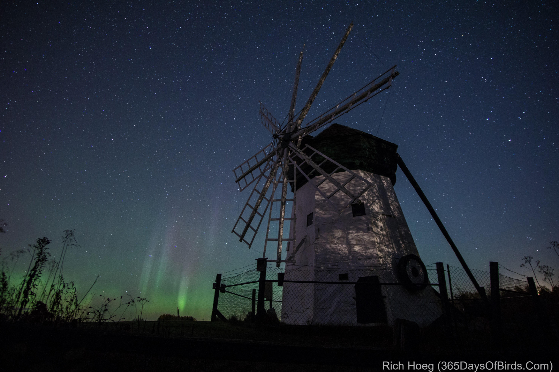 June: Northern Lights At The Davidson Windmill